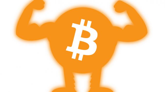 bitcoin dominanz btc